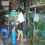 Nạp bình khí co2 thủy sinh